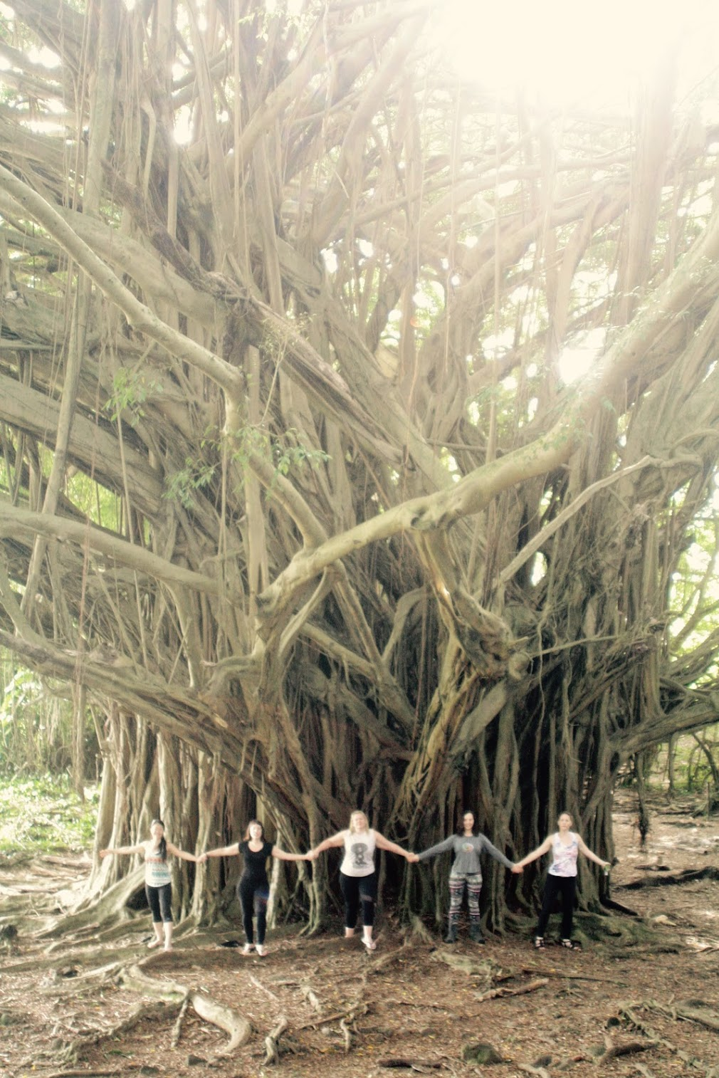 Magical Tree Magical Women