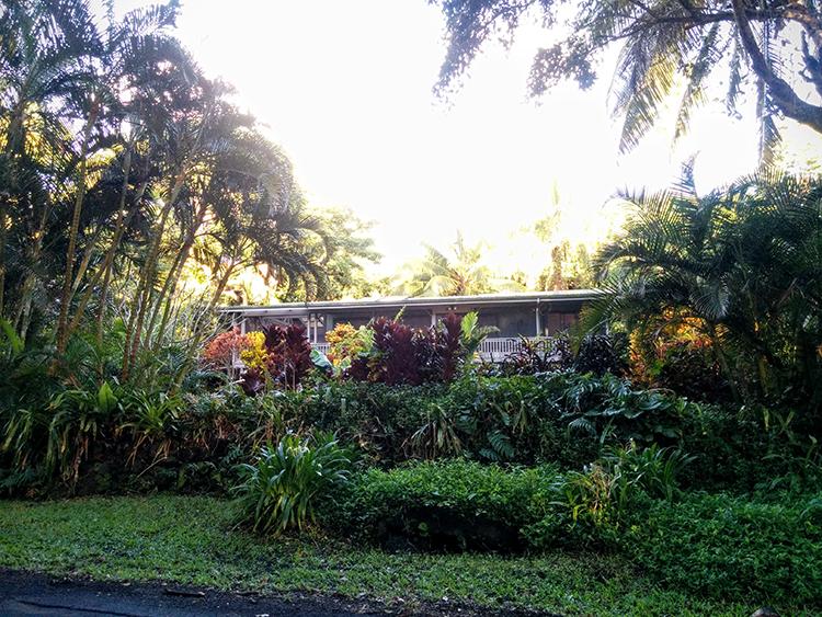 Jungle Home Hawaii Retreat