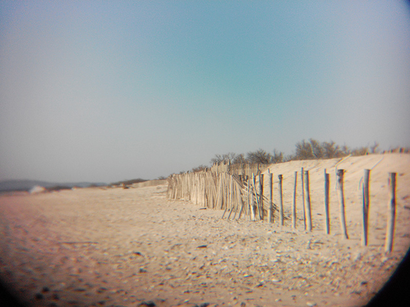 Beach Transition
