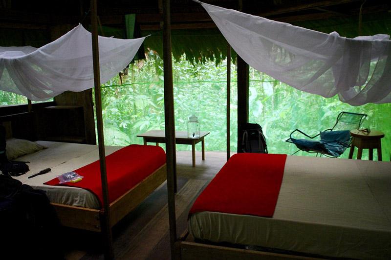Jungle Medicine tambo-beds